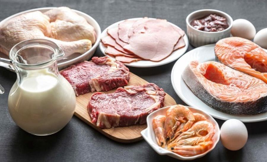 نشانه ها و علائم کمبود پروتئین