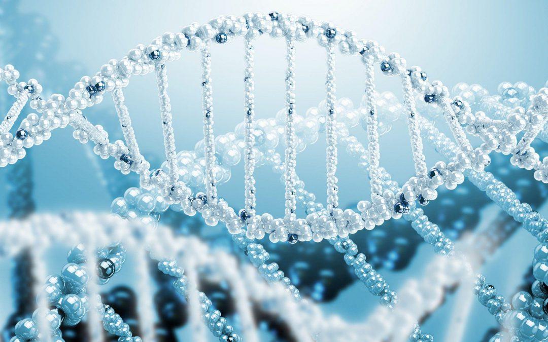 DNA چه اطلاعات ارزشمندی به ما می دهد؟