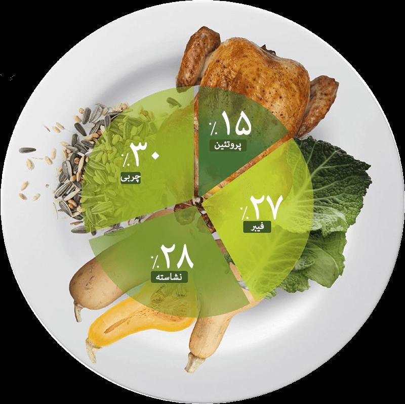 رژیم غذایی کم کربوهیدرات مای ژن